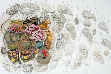 Ceramic corals by Courtney Mattison