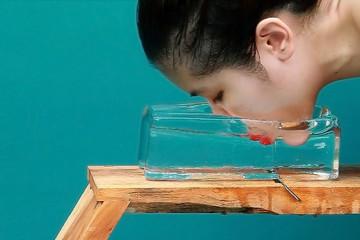Kawita Vatanajyankur: physical experiments