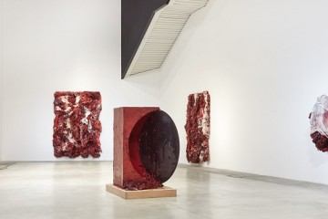 Anish Kapoor at MACRO
