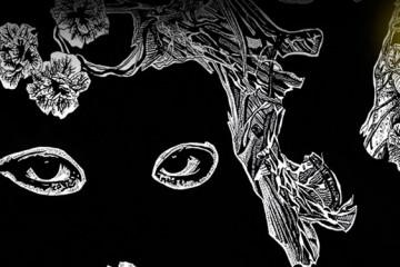 LIGHT ON: Sonia Kolner's illustration