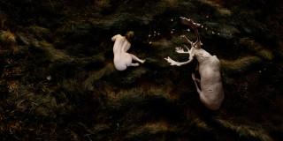 Bear Kirkpatrick's Hierophanies and Human Diorama