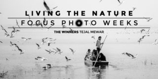 FOCUS PHOTO WEEKS | LIVING THE NATURE – The Winners: Tejal Mewar