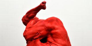 Grzegorz Gwiazda: Human deformations
