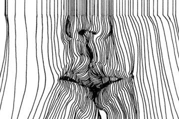 Nester Formentera: 3D lines